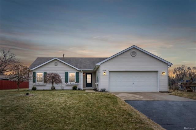 15041 Knottingham Drive, Argentine Twp, MI 48451 (#219005474) :: The Buckley Jolley Real Estate Team