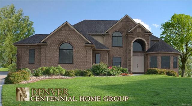 50395 Boardwalk Avenue, Northville, MI 48167 (#219005504) :: Duneske Real Estate Advisors