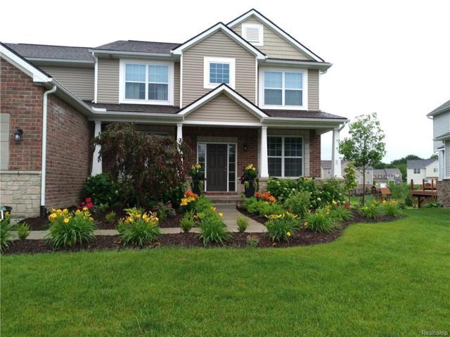 58003 Sunflower Circle N, Lyon Twp, MI 48165 (#219006332) :: The Buckley Jolley Real Estate Team