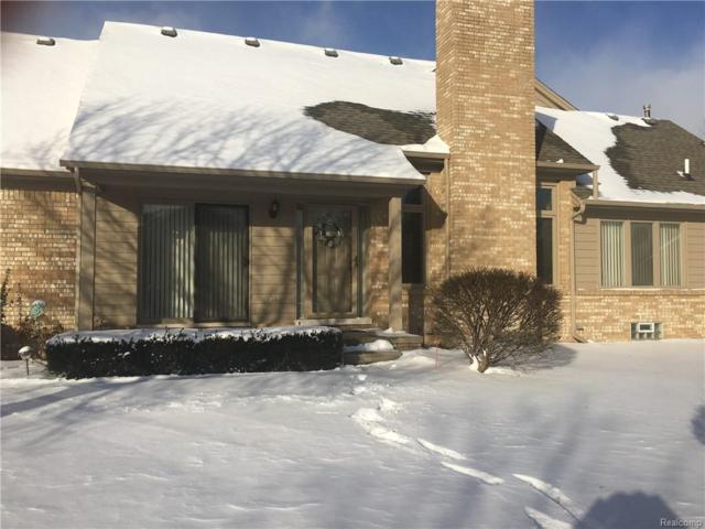 16725 Pearlcreek Court Court, Macomb Twp, MI 48042 (#219006679) :: KNE Realty 360