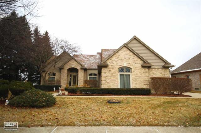 13633 Patterson, Shelby Twp, MI 48315 (#58031369328) :: The Alex Nugent Team   Real Estate One
