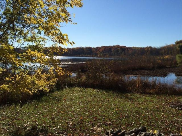 Lot 69 Skinner Lake Road, Oregon Twp, MI 48446 (#219006799) :: The Mulvihill Group