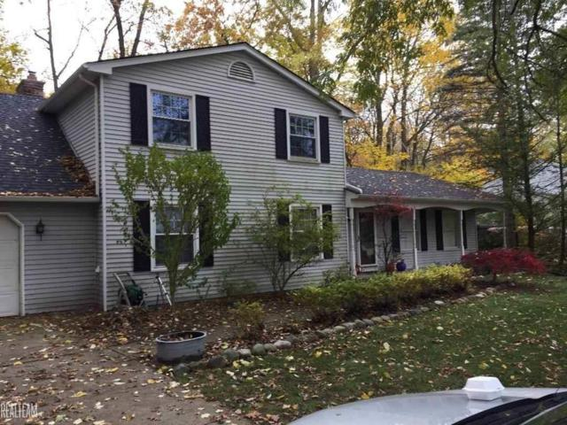 3862 Pickford, Shelby Twp, MI 48316 (#58031369373) :: The Alex Nugent Team   Real Estate One