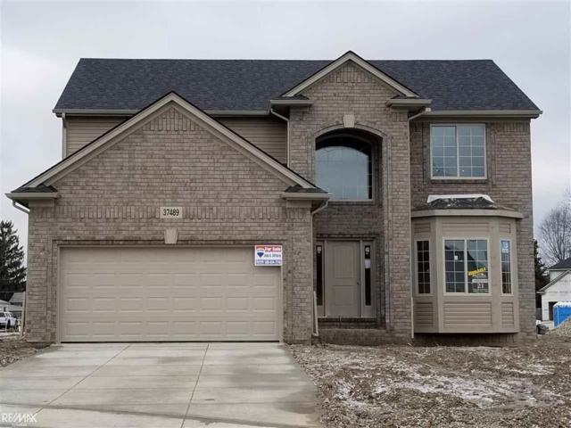 37489 Ersa Ct, Sterling Heights, MI 48310 (#58031369385) :: The Alex Nugent Team | Real Estate One