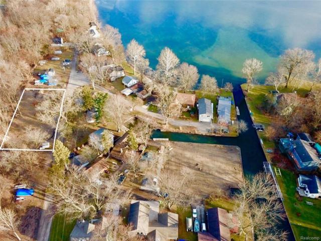 10125 Elmcrest, Green Oak Twp, MI 48189 (#219007387) :: The Buckley Jolley Real Estate Team