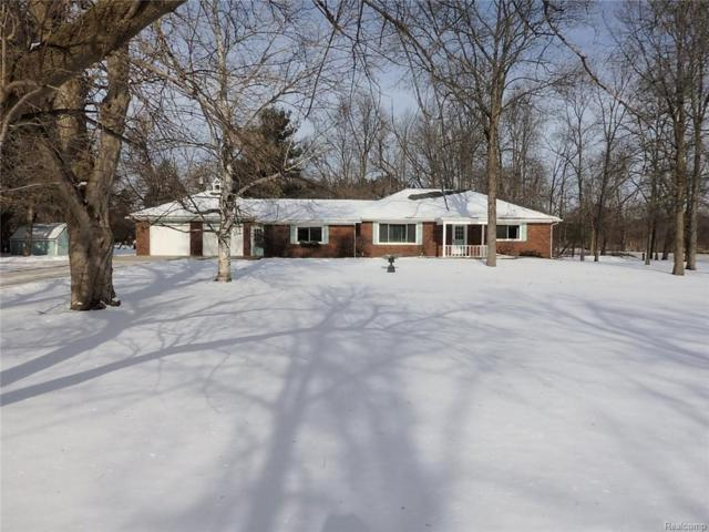 3360 Tipsico Trail, Rose Twp, MI 48442 (#219007433) :: The Buckley Jolley Real Estate Team