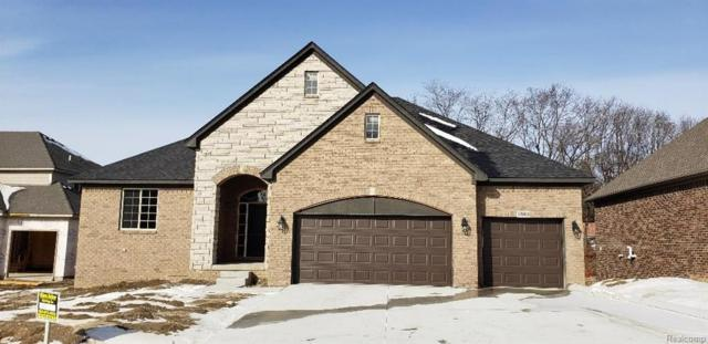 7363 Park Terrace Lane, Shelby Twp, MI 48317 (MLS #219008306) :: The Toth Team