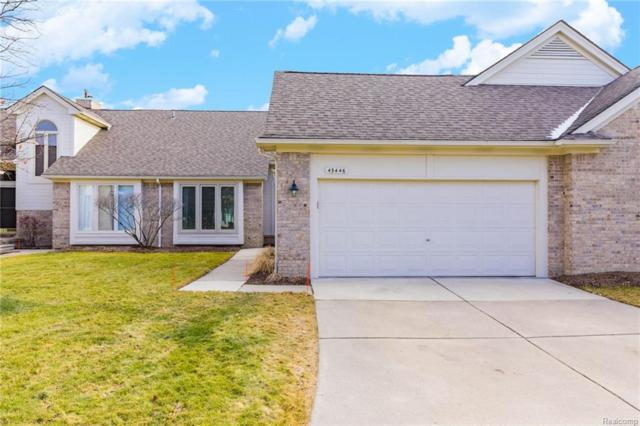 43446 Napa Drive, Sterling Heights, MI 48314 (#219008866) :: NERG Real Estate Experts