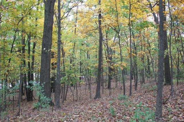 Lot 16 Hickory Valley Road, Milford Twp, MI 48380 (#219008974) :: RE/MAX Classic