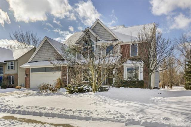 9532 Shelby Drive, White Lake Twp, MI 48386 (MLS #219009340) :: The Toth Team