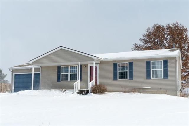 18265 Berkshire Drive, Unadilla, MI 48137 (#543262551) :: The Buckley Jolley Real Estate Team