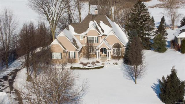 6711 Brook Trout Court, Salem Twp, MI 48170 (#219009597) :: The Buckley Jolley Real Estate Team