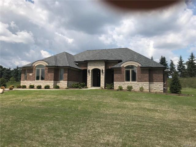 10566 Stoney Point Drive, Green Oak Twp, MI 48178 (#219009671) :: The Mulvihill Group