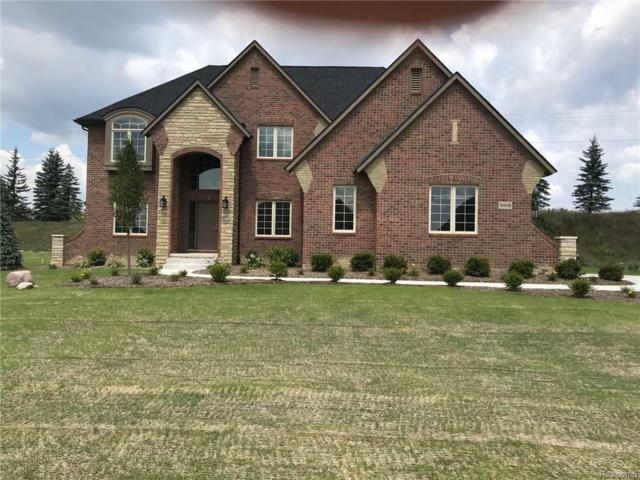 10558 Stoney Point Drive, Green Oak Twp, MI 48178 (#219009676) :: The Mulvihill Group