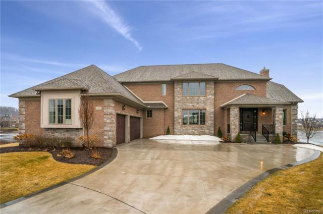 8395 Pier Point Court, Green Oak Twp, MI 48178 (#219010520) :: The Mulvihill Group