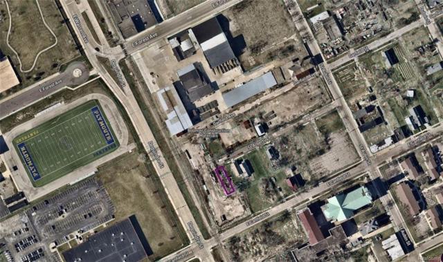 1920 Saint Albertus Place, Detroit, MI 48202 (#219011431) :: NERG Real Estate Experts