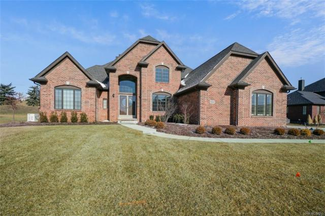 10444 Stoney Point Drive, Green Oak Twp, MI 48178 (#219011433) :: The Mulvihill Group