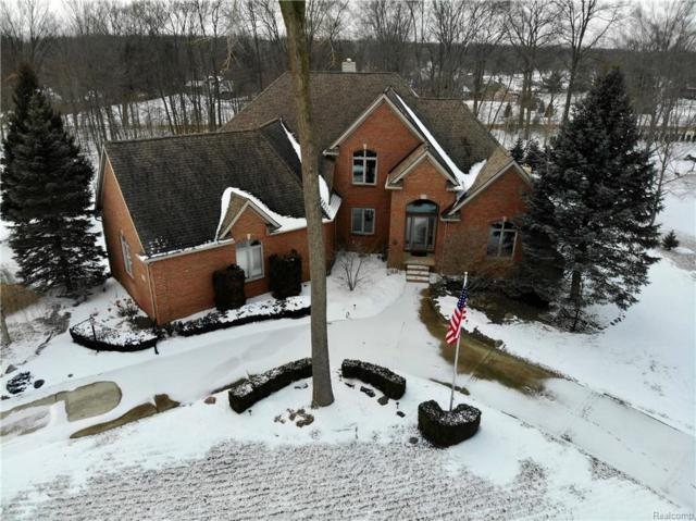 23748 Point O Woods Court, Lyon Twp, MI 48178 (#219012054) :: Duneske Real Estate Advisors