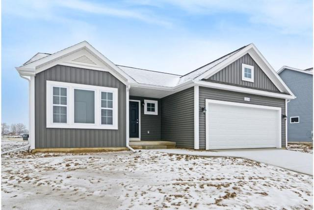 3238 Hill Hollow Lane, Howell Twp, MI 48855 (#219012138) :: The Buckley Jolley Real Estate Team
