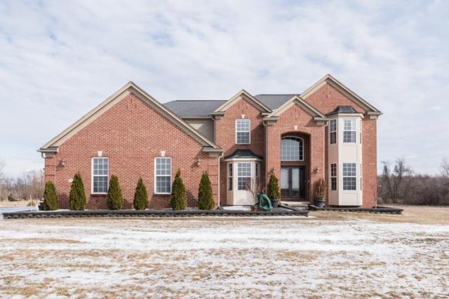 9178 Barton Drive, Augusta Twp, MI 48197 (#543262887) :: The Buckley Jolley Real Estate Team