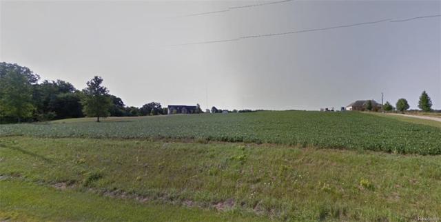 VL Clinton-Macon Road, Clinton Twp, MI 49236 (#219013746) :: The Buckley Jolley Real Estate Team