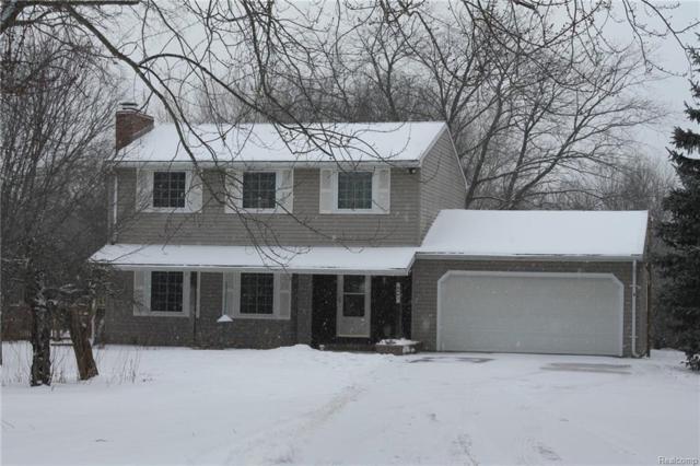 8965 Buckhorn Lake Road, Rose Twp, MI 48442 (#219013811) :: The Buckley Jolley Real Estate Team