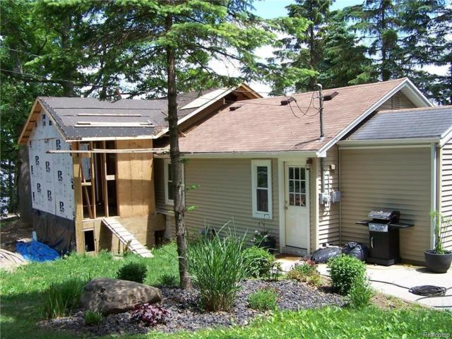 7033 Whitney Woods Road, Deerfield Twp, MI 48430 (#219013829) :: KNE Realty 360