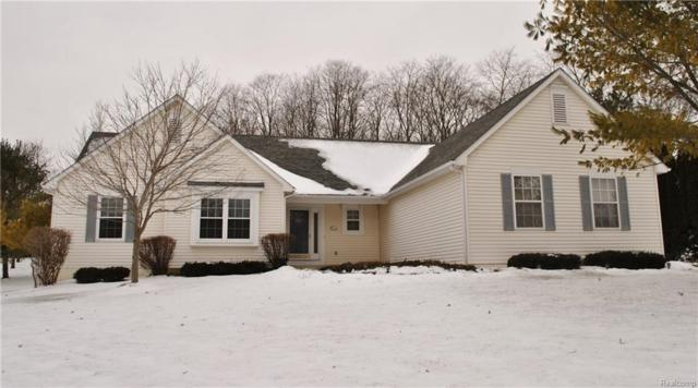 8200 Old Mill Drive, Hamburg Twp, MI 48169 (#219013883) :: KNE Realty 360