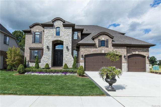13550 Valencia Drive, Shelby Twp, MI 48315 (#219013930) :: NERG Real Estate Experts
