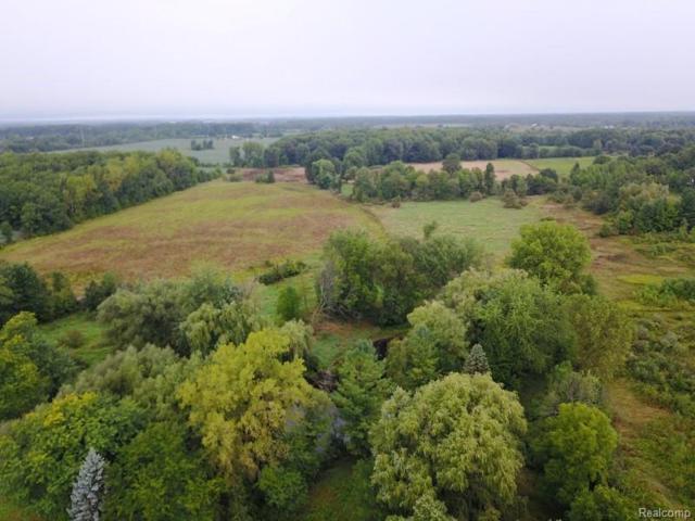 22 acres Homestead Lane, Imlay Twp, MI 48444 (#219014004) :: The Buckley Jolley Real Estate Team