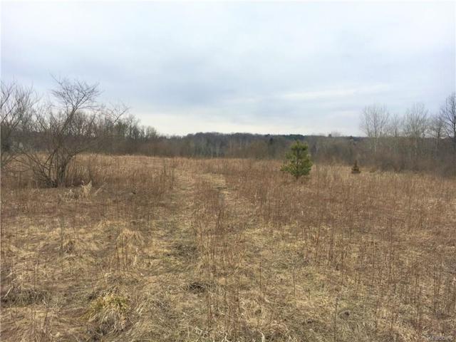 0000 C Hidden Lake Trail, Brandon Twp, MI 48462 (#219014021) :: The Buckley Jolley Real Estate Team