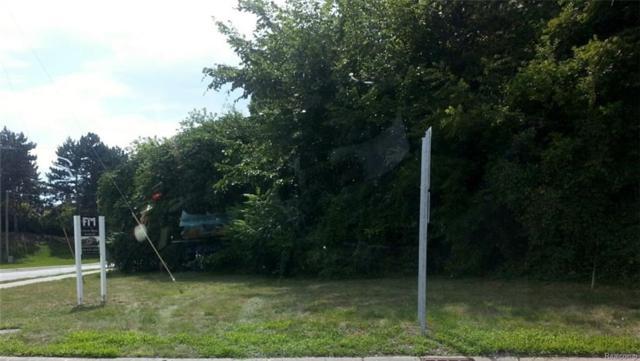 VL Hickory Grove, Bloomfield Twp, MI 48302 (#219014031) :: KNE Realty 360