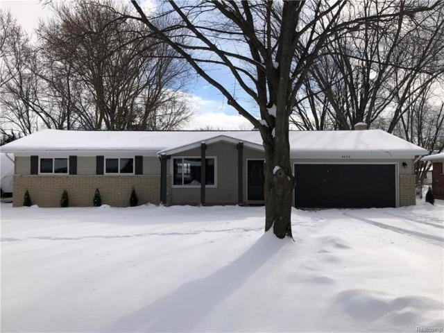 4624 Maeder Street, Shelby Twp, MI 48316 (#219014044) :: NERG Real Estate Experts