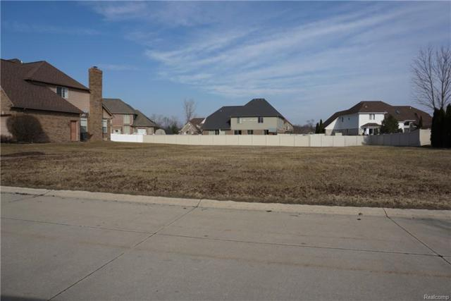 27190 Starkey Lane, Brownstown Twp, MI 48174 (#219014978) :: The Buckley Jolley Real Estate Team