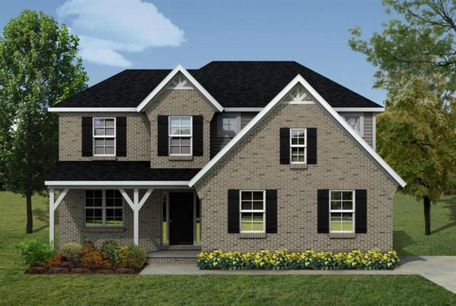9202 Potterville Drive, Augusta Twp, MI 48191 (#543263161) :: The Buckley Jolley Real Estate Team