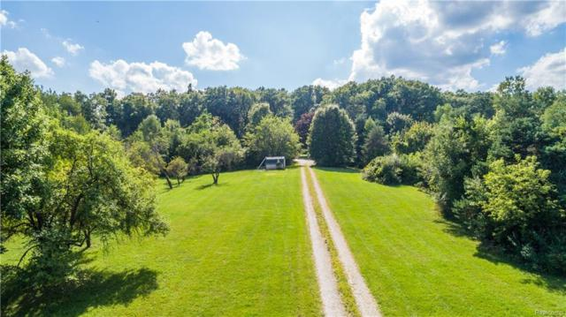 11610 Dixie Highway, Holly Twp, MI 48442 (#219016613) :: The Buckley Jolley Real Estate Team