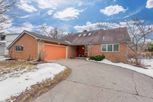 52 Butternut Court, Chelsea, MI 48118 (#543262956) :: The Buckley Jolley Real Estate Team