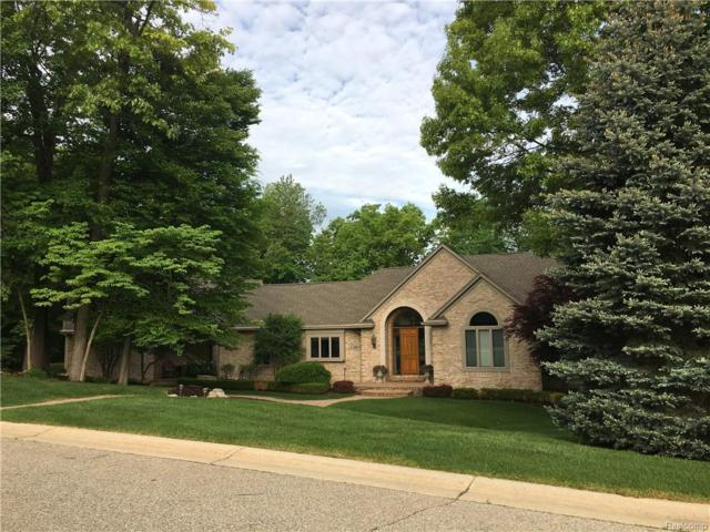 6380 Crest Forest Court W, Independence Twp, MI 48348 (#219017345) :: The Buckley Jolley Real Estate Team