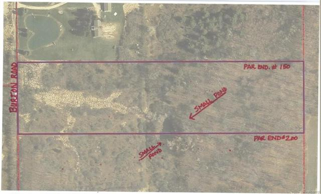 parcel 1 of 2 Burton Road, Capac Vlg, MI 48014 (#219017382) :: The Buckley Jolley Real Estate Team