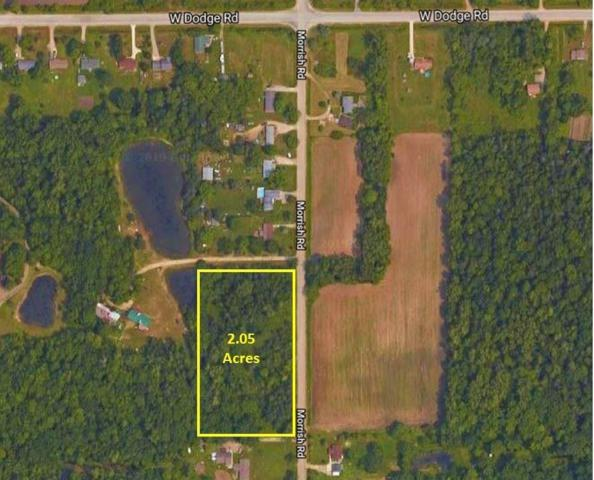 Morrish, Montrose Twp, MI 48457 (#5031372169) :: Real Estate For A CAUSE