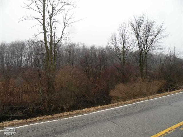 0 Cove - 2 Acres, Wales Twp, MI 48027 (MLS #58031372191) :: The Toth Team