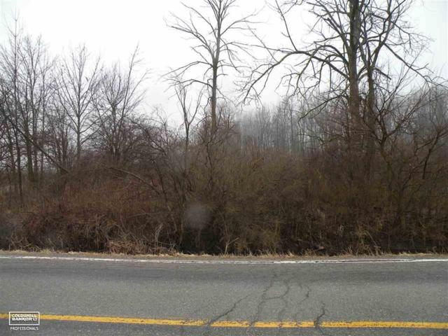 0 Cove - 3.2 Acres, Wales Twp, MI 48027 (MLS #58031372192) :: The Toth Team