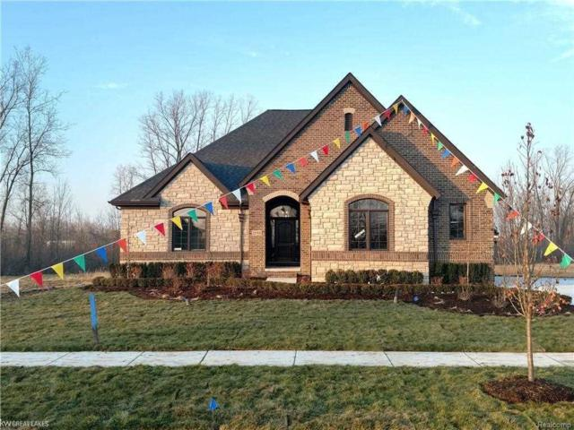 11769 Forest Brook, Washington Twp, MI 48094 (#58031372199) :: RE/MAX Nexus