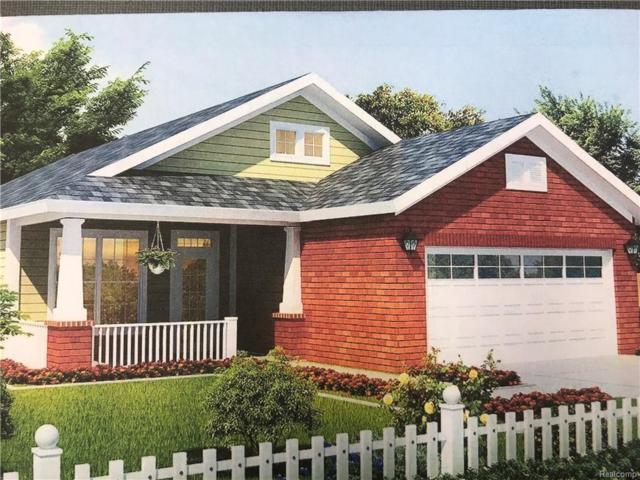 915 Mcpherson Street S, Howell, MI 48843 (#219018527) :: The Buckley Jolley Real Estate Team