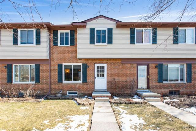205 Sheffield Drive, Saline, MI 48176 (#543263344) :: RE/MAX Nexus