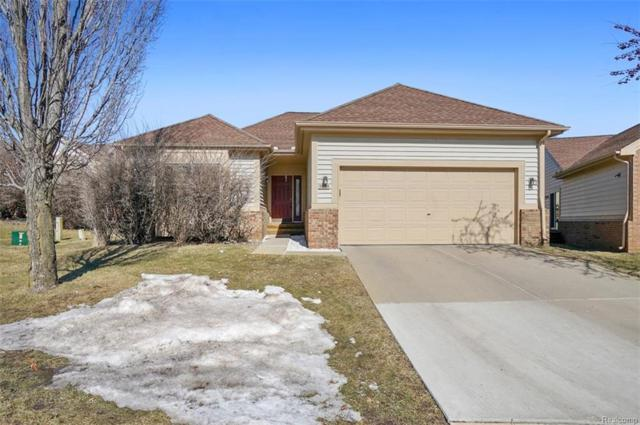 31065 Seneca Lane, Novi, MI 48377 (#219020406) :: The Buckley Jolley Real Estate Team