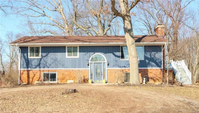 3190 W Coon Lake Road, Marion Twp, MI 48843 (#219020659) :: The Buckley Jolley Real Estate Team