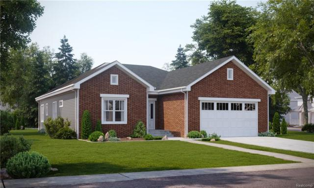 70664 Sunny Brook Lane, Richmond, MI 48062 (#219021228) :: The Buckley Jolley Real Estate Team