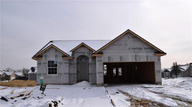 4436 Cross Creek Boulevard #84, Burton, MI 48509 (#219021473) :: The Buckley Jolley Real Estate Team