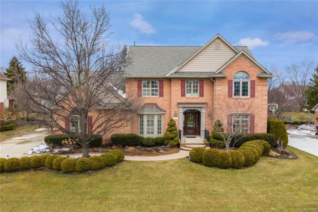 154 Timberview Drive, Troy, MI 48084 (#219022218) :: The Alex Nugent Team   Real Estate One
